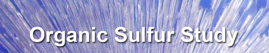 Cellular Matrix Study – Organic Sulfur For Health